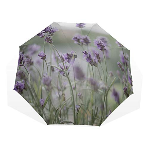 Folding Kids Umbrella Lavender Purple Lavender Flowers Violet Blossom 3 Fold Art Umbrellas(outside Printing) Lightweight Folding Umbrella Umbrella For The Rain Best Travel Umbrellas