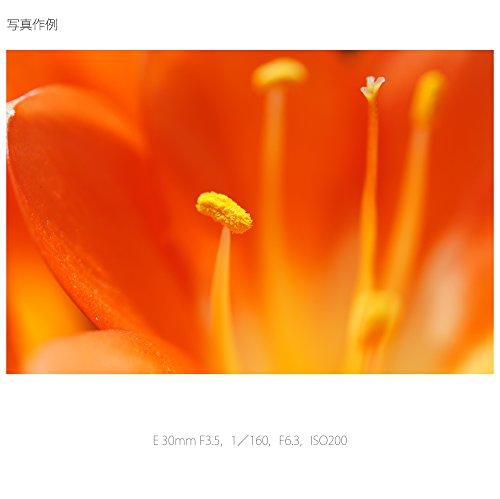 ソニー単焦点レンズE30mmF3.5MacroソニーEマウント用APS-C専用SEL30M35