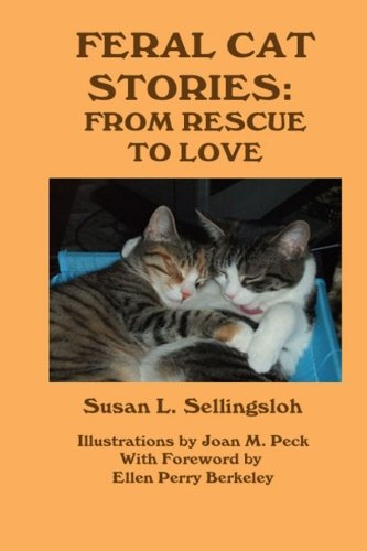 Feral Cat Stories: From Rescue to Love