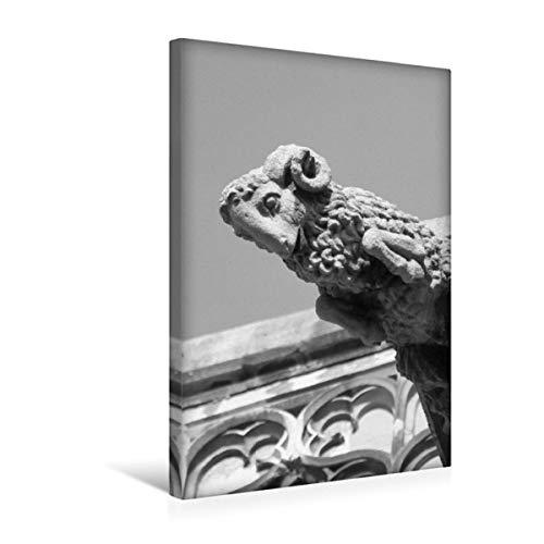 Premium Textil-Leinwand 30 x 45 cm Hoch-Format Ulmer Schaf, Leinwanddruck von Kattobello