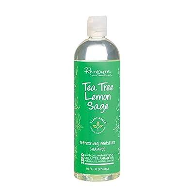Renpure Plant-Based Beauty Tea Tree & Lemon Sage Refreshing Moisture Shampoo, 16 Fluid Ounce