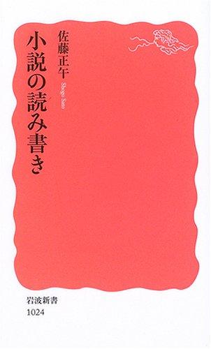 小説の読み書き (岩波新書)