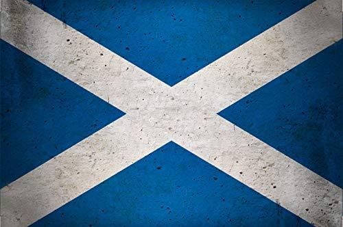 FS land vlag Schotland nationale vlag metalen bord bordje gebogen metalen teken 20 x 30 cm