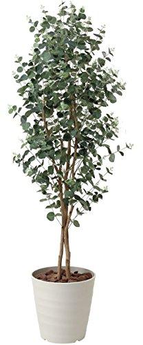 観葉植物 造花 「ユーカリ」 光触媒(空気清浄) インテリアグリーン 鉢:プラスチック (H160cm)