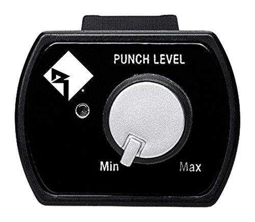 Rockford Fosgate Punch-Level-Steuerung