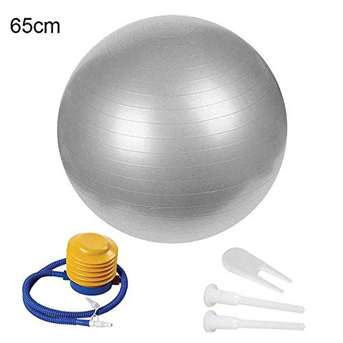 APcjerp Gymnastikball 65 cm 75 cm Yoga Gleichgewicht Gymnastikball mit Luftpumpe Yoga Bauch-Übung Fitness Ball Liefer Behandlung (Color : 65cm Gray)