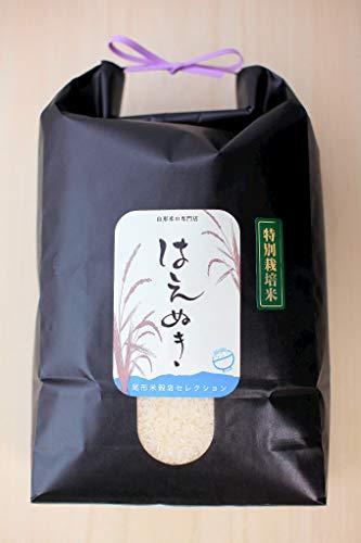 食味最優秀賞受賞農家 山形県大蔵村 柿崎康宏産 特別栽培米 白米 はえぬき 令和2年産 (5kg)