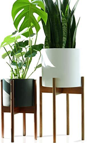 Soporte para plantas alto Fox & Fern Acacia -...