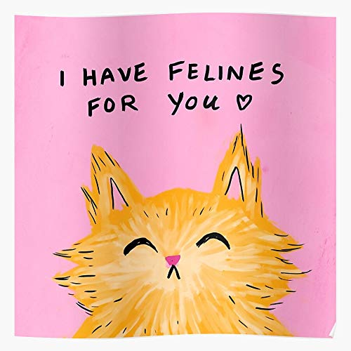RESIGN Love Valentines Day Puns Valentines Cute PDA Kitty Cat I S Poster for Home Decor Wall Art Print Poster