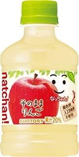 サントリー なっちゃん りんご 280mlペットボトル×24本入×(2ケース)