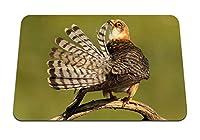26cmx21cm マウスパッド (鳥の美しい羽の縞模様) パターンカスタムの マウスパッド