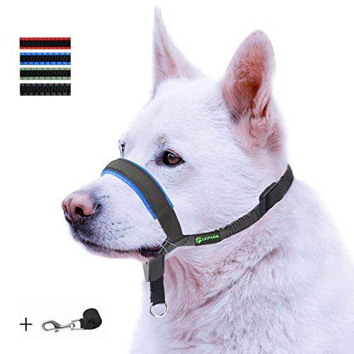 ILEPARK Gepolsterter Hundehalfter aus Leder - Hundehalsband-Halfter der Ziehen verhindert, Einstellbar, Maulkorb Hunde (L, Blau)