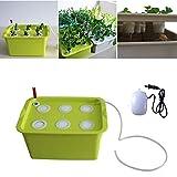 CRZJ Kit de Sistema hidropónico, Caja de siembra de plástico hidropónico para Cultivo de hortalizas, 6 Agujeros