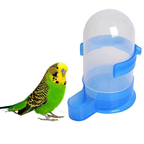 Vogelfutter Füttern Trinkwasser Feeder Schüssel 3-mit Halter für Parrot Aras African Greys Wellensittiche Sittiche Nymphensittiche Sittiche Vogelkäfig