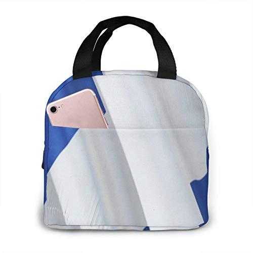 Dekorative Lunchtasche mit schottischer Flagge, 3D-Renning, wiederverwendbar, isoliert, Kühltasche mit Vordertasche, Reißverschluss, für Damen, Herren, Arbeit, Picknick