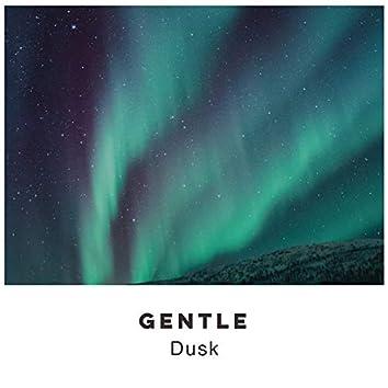 # 1 Album: Gentle Dusk