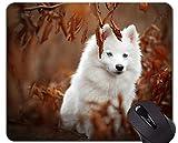 Yanteng Alfombrilla de ratón de Caucho Natural para Juegos, Impresa con Perro Mascota Perro Samoyedo - Bordes cosidos