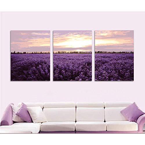 Pintura en lienzo HD 3 piezas grandes imágenes de lavanda púrpura DIY pintura por números en lienzo pintado a mano para colorear por números para sala de estar -40CM*60cm*3
