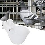 Cikonielf 12 Piezas Bebedero para pájaros Taza alimentador automático de...