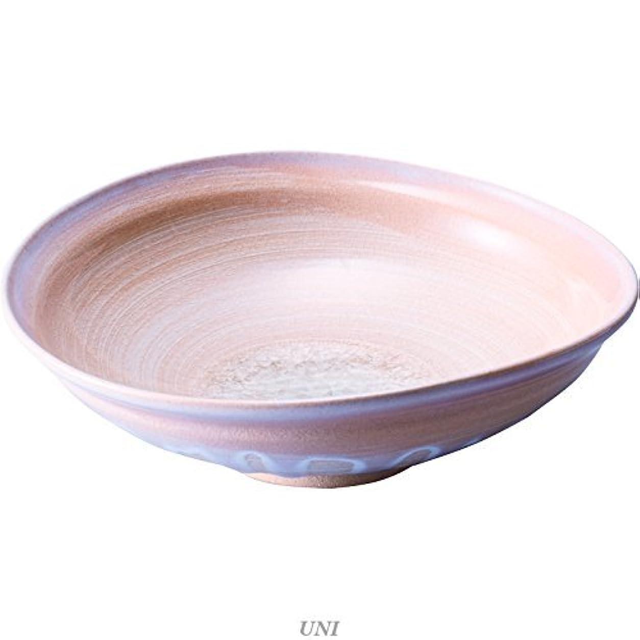 メロディーアンカーサンダース萩の雫 大鉢 43004