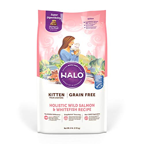 Halo Grain Free Natural Dry Cat Food - Kitten Recipe - Premium and Holistic Wild Salmon & Whitefish - 6 Pound Bag - Sustainably Sourced Dry Cat Food - Whole Meat, Highly Digestible, Non-GMO