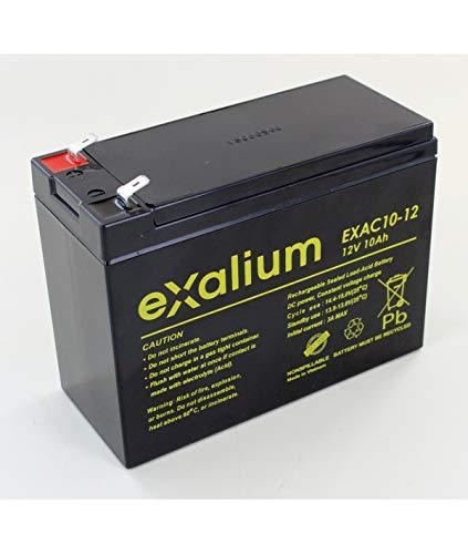Exalium EXAC10-12 - Batería de plomo cíclica (12 V, 10 Ah)