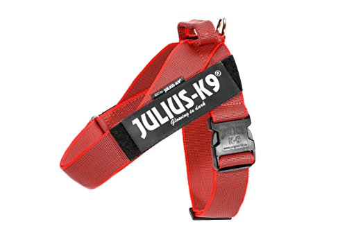 Julius-K9 IDC Color & Gray Belt Harness for Dogs, Size 2, Red-Gray