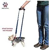 (X-Small - Male/Female) - GingerLead Dog Support & Rehabilitation Harnesses - Padded Dog