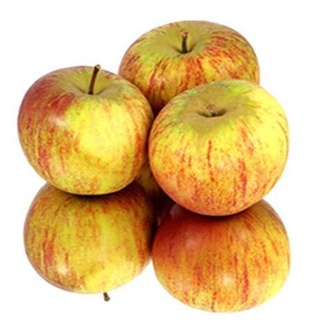 Cox Orange Äpfel vom Bodensee, süß säuerlich in 10 kg Kiste