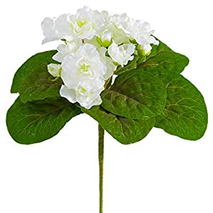 8″ Silk African Violet Flower Bush -White (Pack of 24)