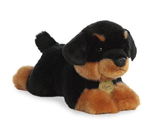 Aurora - Miyoni - 11' Rottweiler Pup