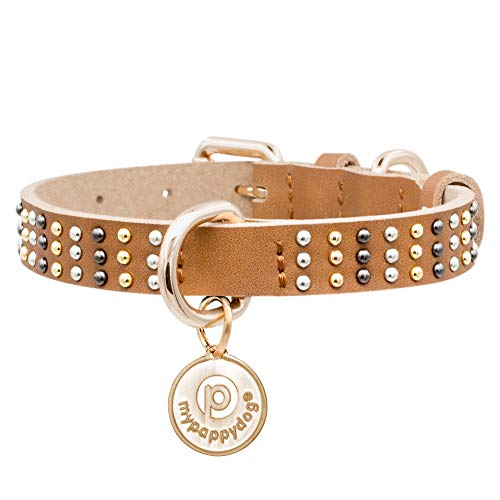 mypappydog Real Leather Studded Dog Collar for Small Medium Dogs and Puppies | High Tensile Force Double D-Rings for Dog ID Tag + Leash | Soft Comfortable and Durable Dog Collar | Small Studded/Brown