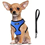 TwoEar Dog Harness |Car Harness for Dog |Adjustable Pet Harness |Breathable Pet Harness with Car Vehicle Safety Seat Belt. Outdoor Walking, for X-Small/Small/Medium/Large Dogs Cat Puppy(S,Blue)
