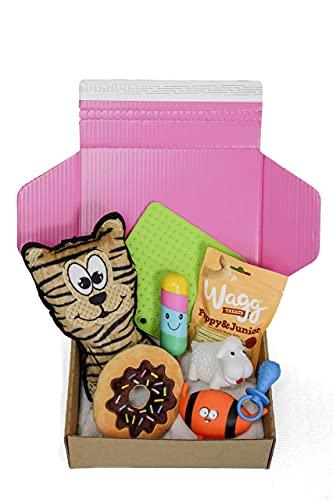 Dog Gift Box Hamper | Dog Hamper | Dog Treats | Dog Toys | Dog Birthday Present Box | Dog Box | Get well soon | Gotcha Day | Dog Gift | Pink Box | Dog Gift Set