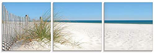 Artland Glasbilder Wandbild Glas Bild 3er Set 3 teilig je 50x50 cm Quadratisch Strand Meer Küste Sand Düne Gräser Maritim T5MA