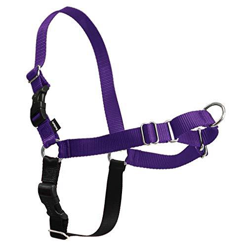 PetSafe Easy Walk Harness,  Large, Deep Purple & Black for Dogs