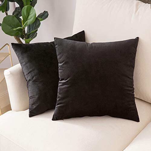 Woaboy Pack of 2 Velvet Throw Pillow Covers Decorative Pillowcases Solid Soft Cushion Covers Pillow Case Square Modern for Couch Living Room Sofa Bedroom Car 20x20 inch 50x50cm Black