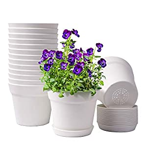 HOMENOTE Pots for Plants, 15 Pack 6 inch Plastic Planters with Multiple Drainage Holes and Tray – Plant Pots for All Home Garden Flowers Succulents, Cream White