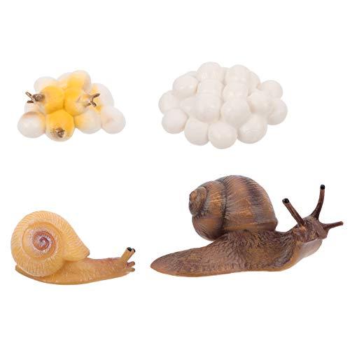 YARNOW Lebenszyklus Schnecken-Set, 4 Stück, Kunststoff, Safariologie, Wachstumszyklus, Eierfiguren, Spielzeug, Schulprojekt für kleine Kinder