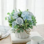 renyd-artificial-flowers-fake-plants-with-small-ceramic-vase-set-of-2
