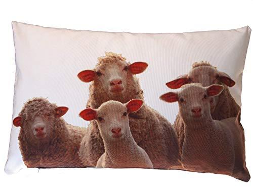 Schaf Kissen, Kissenbezug, 40x60 cm Hülle, Baumwolle, Tier Natur Motiv, Deko, Sofa, Garten