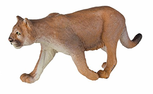 Safari s291529 Wild North American Wildlife Mountain Lion in Miniatura