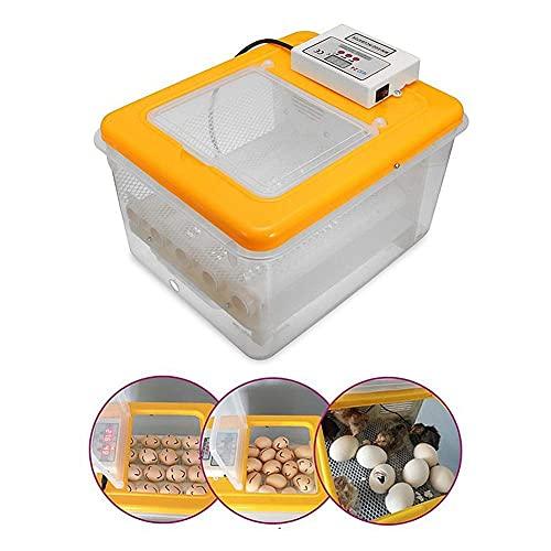 FHISD Mini incubadora de Huevos, incubadora automática de Aves de Corral, Control de Temperatura y Humedad para Pollos, Patos, Ganso, Aves, 16 Huevos