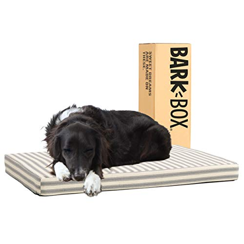 Barkbox Memory Foam Platform Dog Bed | Plush Mattress for Orthopedic Joint Relief | Machine Washable Cuddler with Removable Cover and Water-Resistant Lining | (Large, Stripe)