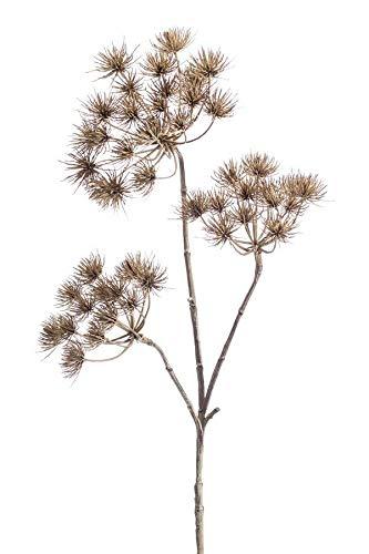 artplants.de Set 6 x Kunstpflanze Bärenklau BELMIRO, braun, 100cm - Kunst Herkulesstaude - Deko Heracleum