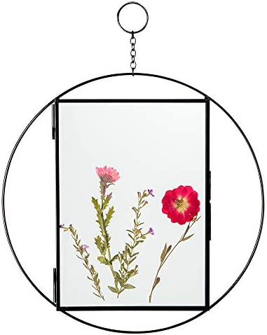 Rainbows Lilies Glass Frame for Pressed Flowers Includes Dried Flowers In Floating Frame Double product image