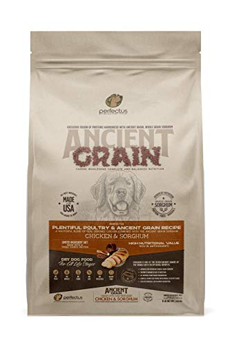 Perfectus Plentiful Poultry and Ancient Grain Recipe - Natural, Non GMO, High Protein Premium Dry Dog Food 8 lbs Bag
