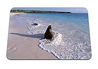 22cmx18cm マウスパッド (アザラシ海砂) パターンカスタムの マウスパッド