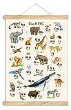 ABC POSTER 50 x 70 cm TIERE UNGERAHMT ZARTES BEIGE OHNE HOLZLEISTE Tierposter Alphabet Lernposter Schulanfang 1. Klasse Kinderzimmer Weihnachtsdeko Baby Bilder Zoo Wald Safari Afrika Kindergarten