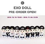 EXO PLUSH DOLL (25cm) エクソ 人形 KOKOKOREA限定特典つき (KAI) 並行輸入品
